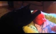 Katė glosto vaikelį