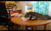 Pusryčiai su mylimu augintiniu