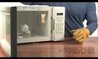 Įdomus eksperimentas su mikrobangų krosnele