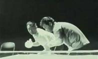 Briusas Ly žaidžia stalo tenisą
