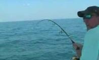 Barakuda įšoko į valtį