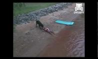 Šuo išgelbėjo skęstantį berniuką