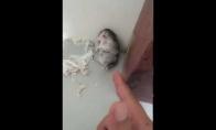 Aktorius žiurkėnas