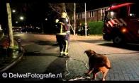 Netikėtas ugniagesių pagalbininkas