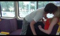 Trolis traukinyje