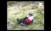 Šunys prieš vaikus