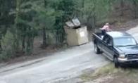 Meškiukų gelbėjimo operacija