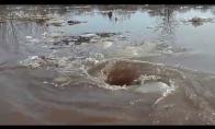 Pražūtingas sukūrys ežere