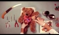 Pliušinio meškiuko operacija