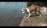 Sizifo šuo