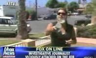 Padaryti reporteriai