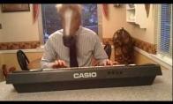Casio arklys