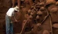 Didžiausias pasaulyje skruzdėlynas
