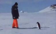 FUS RO DAH pingvinas
