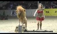 Piktas liūtas