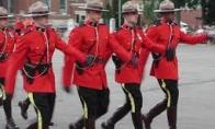 Kanadietiškos gaudynės