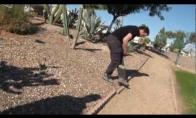 Kaktusas kojoj