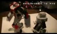 Robotų dvikova