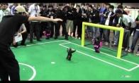 Robotų futbolas