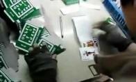 Profesionalus kortų pakuotojas