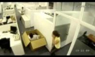 Ką gali užfiksuoti stebėjimo kameros