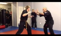 Oppa oppa Karate style