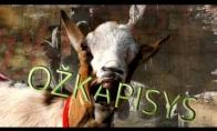 Ožkapisys - Ožka (Goat remix)