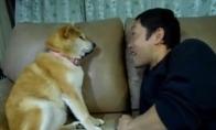 Šuo kuris mėgstaNE bučiuotis