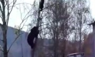 Normali diena Rusijoje