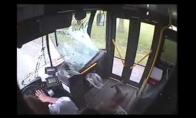 Elnias kamikadzė suniokoja autobusą