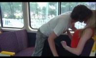 Psichai traukinyje