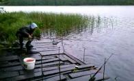 Kai kimba labai stambi žuvis