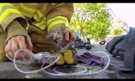 Geraširdis gaisrininkas išgelbsti kačiuką