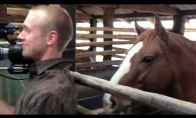 Arklys trolintojas gadina reportažą