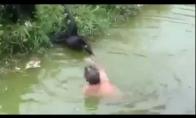 Norėjo pabendraut su beždžionėm