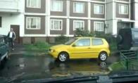 Neįtikėtini parkavimo sugebėjimai
