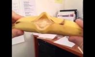 Debiutantas Eurovizijoje - bananas