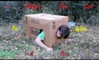 6 dalykai, kuriuos galima nuveikt dėžėje
