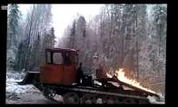 Eilinė diena Rusijos miške