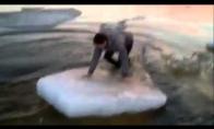 Pirmoji pažintis su ledu