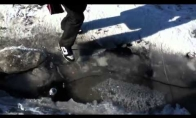 Ledinis pavojus