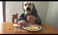 Nežmoniški pusryčiai