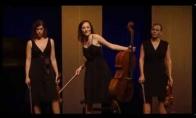 Klasiškas klasikinio kvarteto pasirodymas