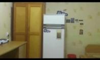 Niekada nedėkite petardų į šaldytuvą