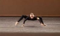 Voro šokis