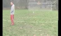 Niekada nebandyk spardyt šuns