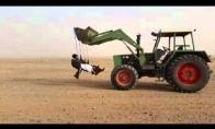Arabų pramogos