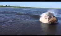 Netikėta ežero pabaisa