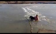 Kilnus žmogus išgelbsti šunį