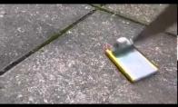 Kas nutinka subadžius telefono bateriją peiliu?